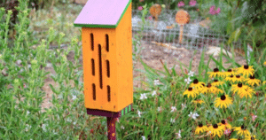 butterfly house, spring diy projects, odd job larry project ideas